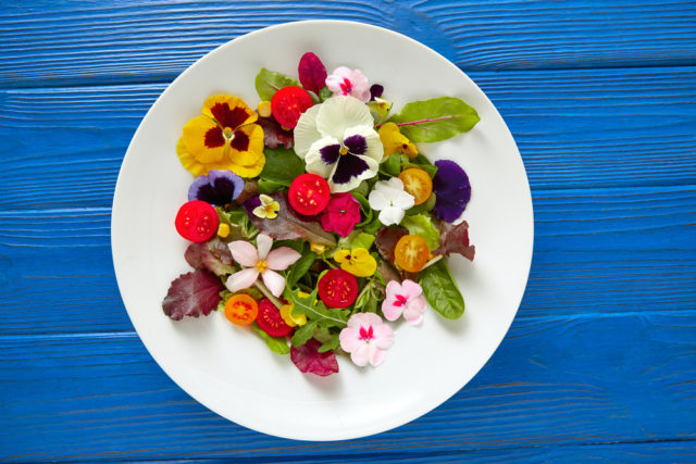Editable flowers for your lunch